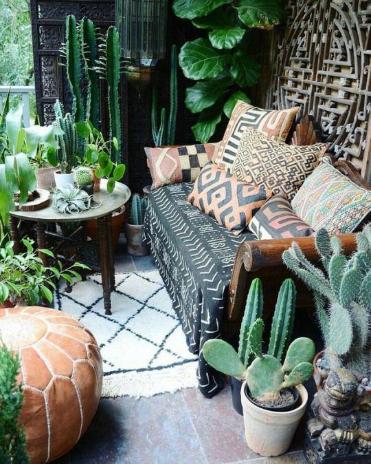Kamerplanten voor je urban jungle