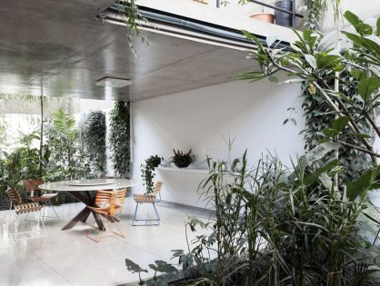 10 kamerplanten voor je eigen urban jungle