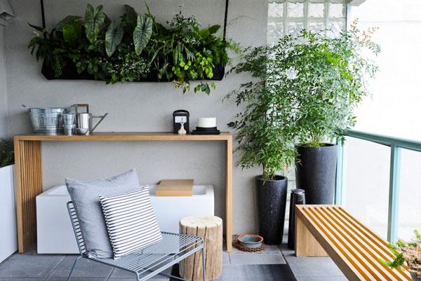 soorten kamerplanten op balkon