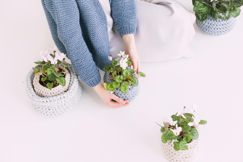 plant verzorgen
