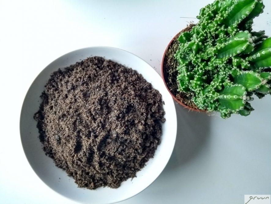 potgrond voor cactussen