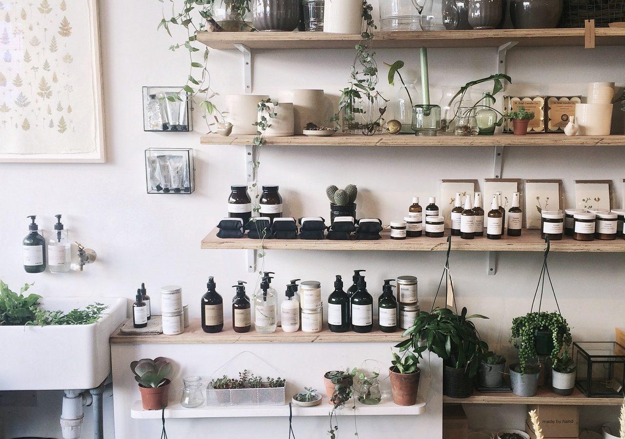 5 plantentools voor beginners
