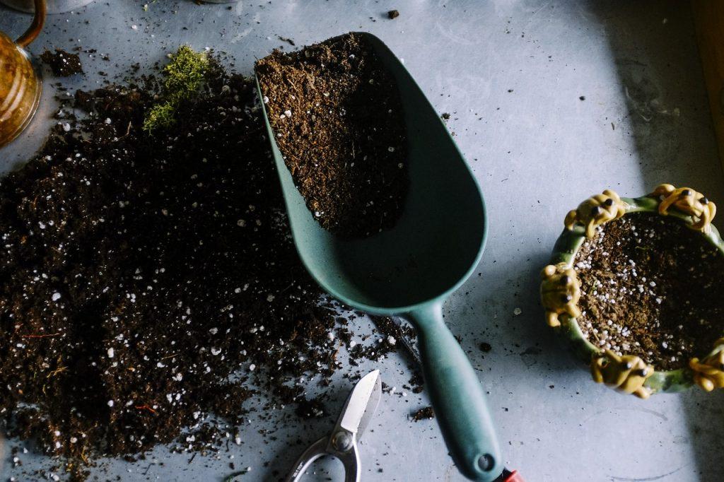 plantschepje uit plantentools