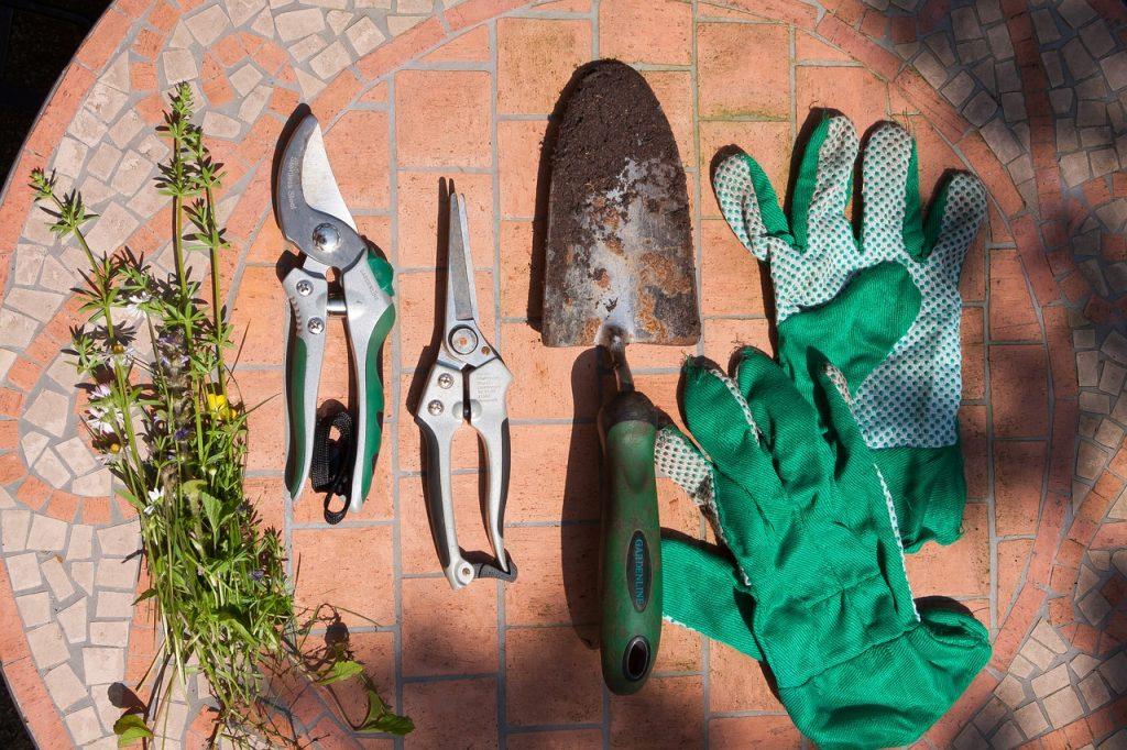 snoeischaar en plantentools