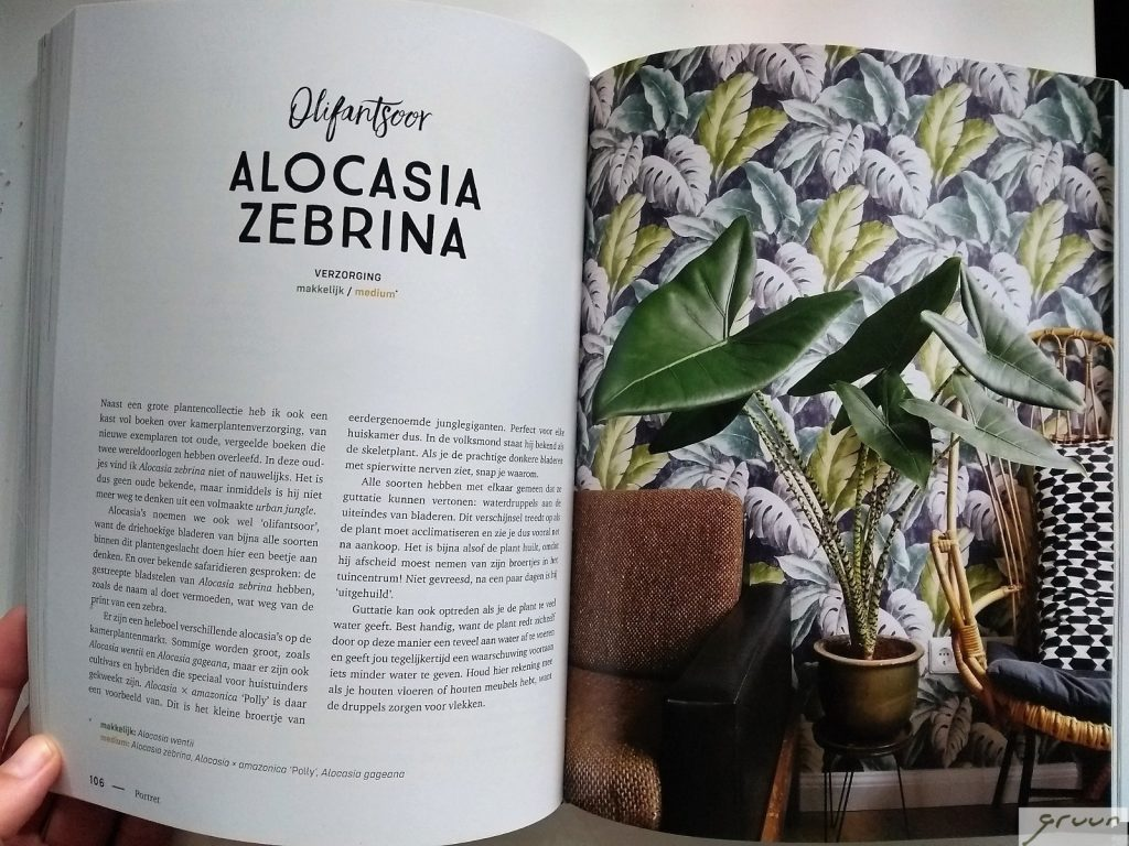 plantastic boek