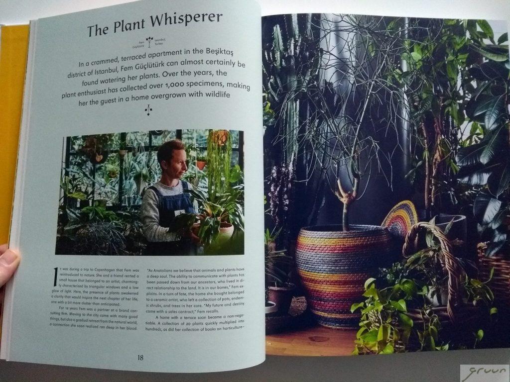 detail boek Evergreen