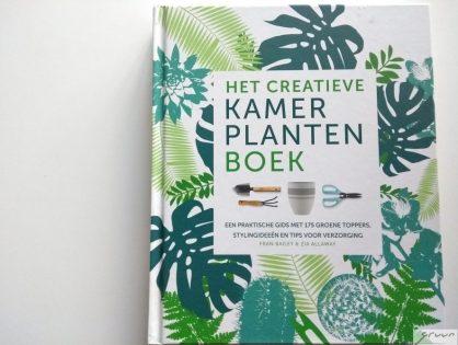 Boek review: Het creatieve kamerplantenboek