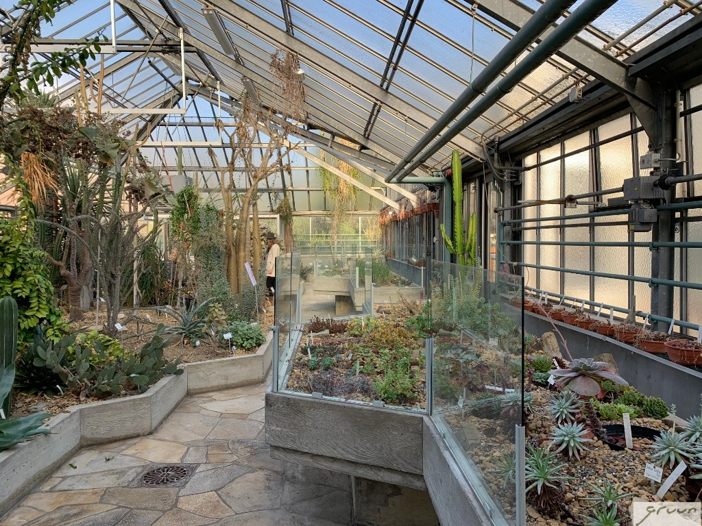 overzicht succulentenkas
