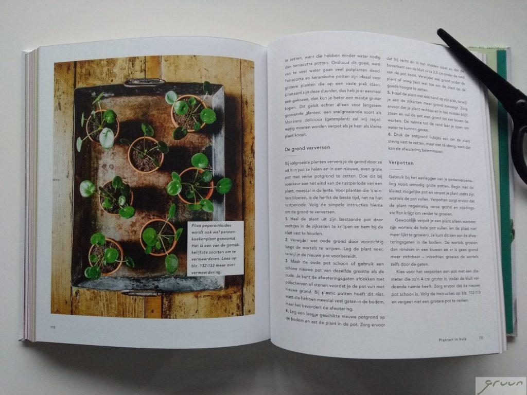 planten in huis boek binnenkant