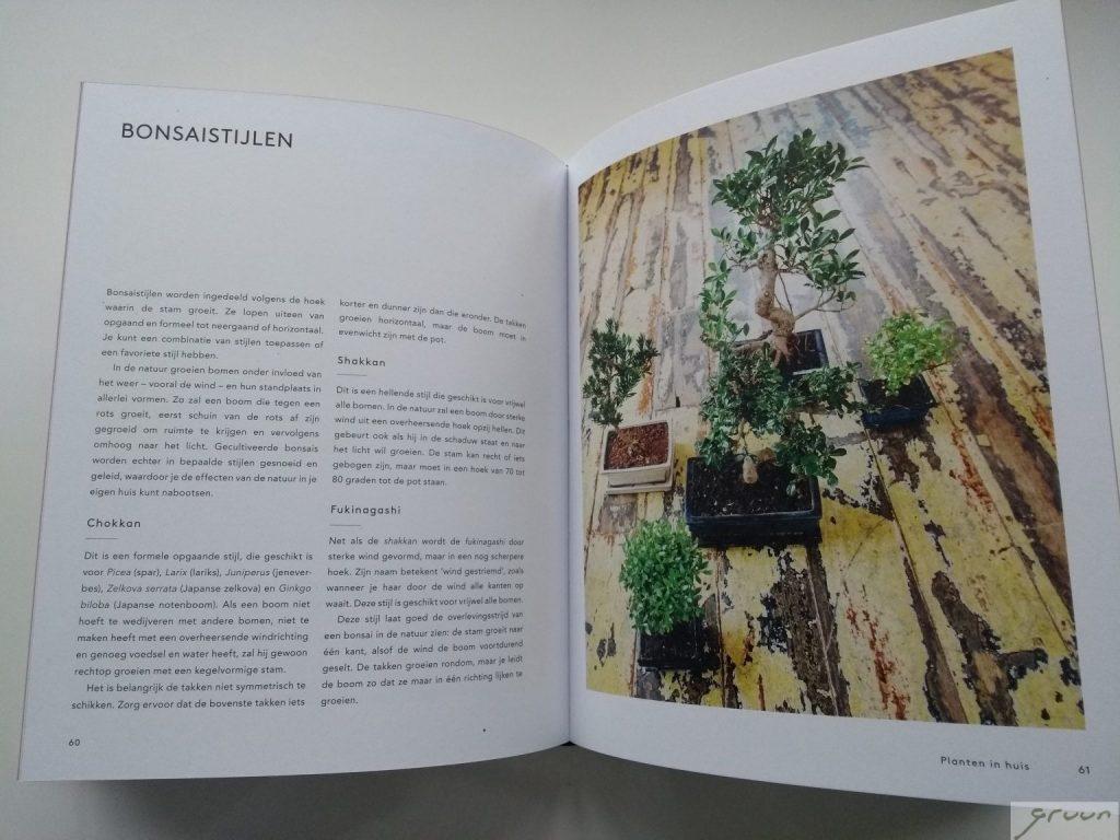 planten in huis boek