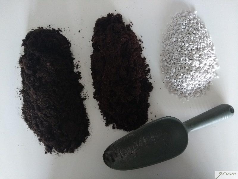 3 elementen voor de tropische potgrondmix
